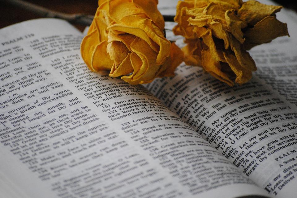 Naisten asema ja tehtävät Jumalan seurakunnassa